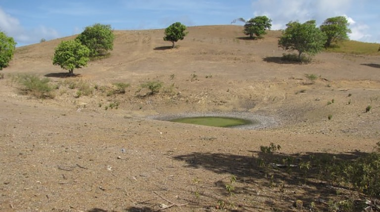 Dry grass and low water in ponds.