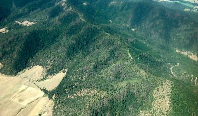 aerial view of low mountains covered in trees