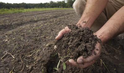 A farmer holds a handful of healthy soil