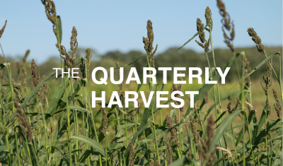 The Quarterly Harvest