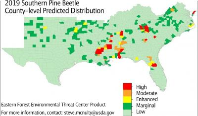 2019 southern pine beetle predicted distribution and severity map from the new USDA Forest Service Southern Pine Beetle Outbreak Model forecasting the level of southern pine beetle risk in all southeast US counties