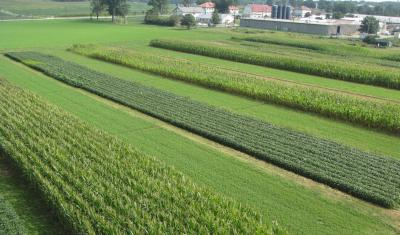 An aerial overview of plots participating in USDA-ARS Farming Systems Project in Beltsville, Maryland