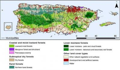 Map of Puerto Rico displaying forest types