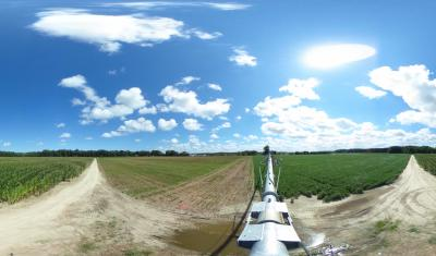 A view at the University of Delaware's Warrington Irrigation Research Farm