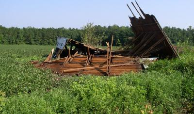 Drying barn knocked down during Hurricane Irene in Pender County, NC