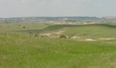 Photo by Matt Reeves, Little Missouri National Grasslands, ND