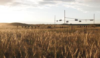 Research Study Site: USDA-ARS High Plains Grasslands Research Station