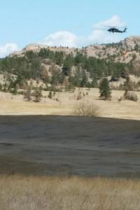 Black Hills NF
