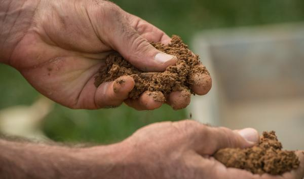 Hands of a person feeling soil 20 minutes after a rain simulator applied 2 inches of water. Photo credit USDA NRCS