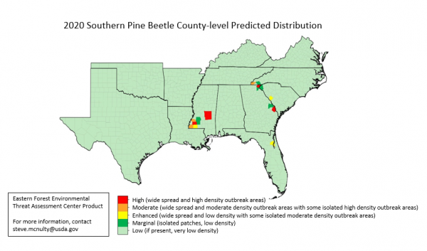 2020 southern pine beetle predicted distribution map