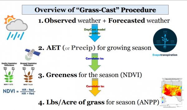 Overview of Grass-Cast Procedure