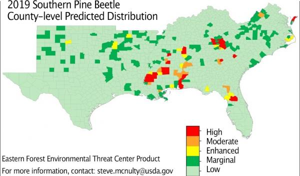 2019 southern pine beetle predicted distribution map