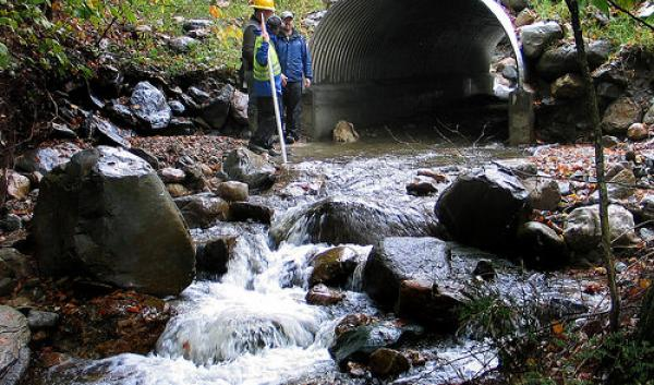 A newly constructed stream simulation culvert on the George Washington National Forest.
