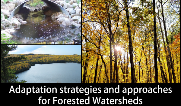 Adaptation strategies and approaches for forested watersheds